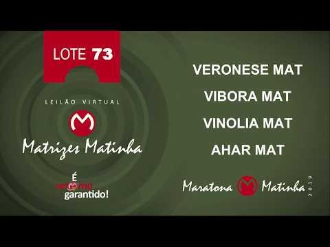 LOTE 73 Matrizes Matinha 2019