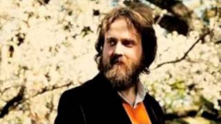 Iron & Wine - The Devil Never Sleeps (Fall 2007)