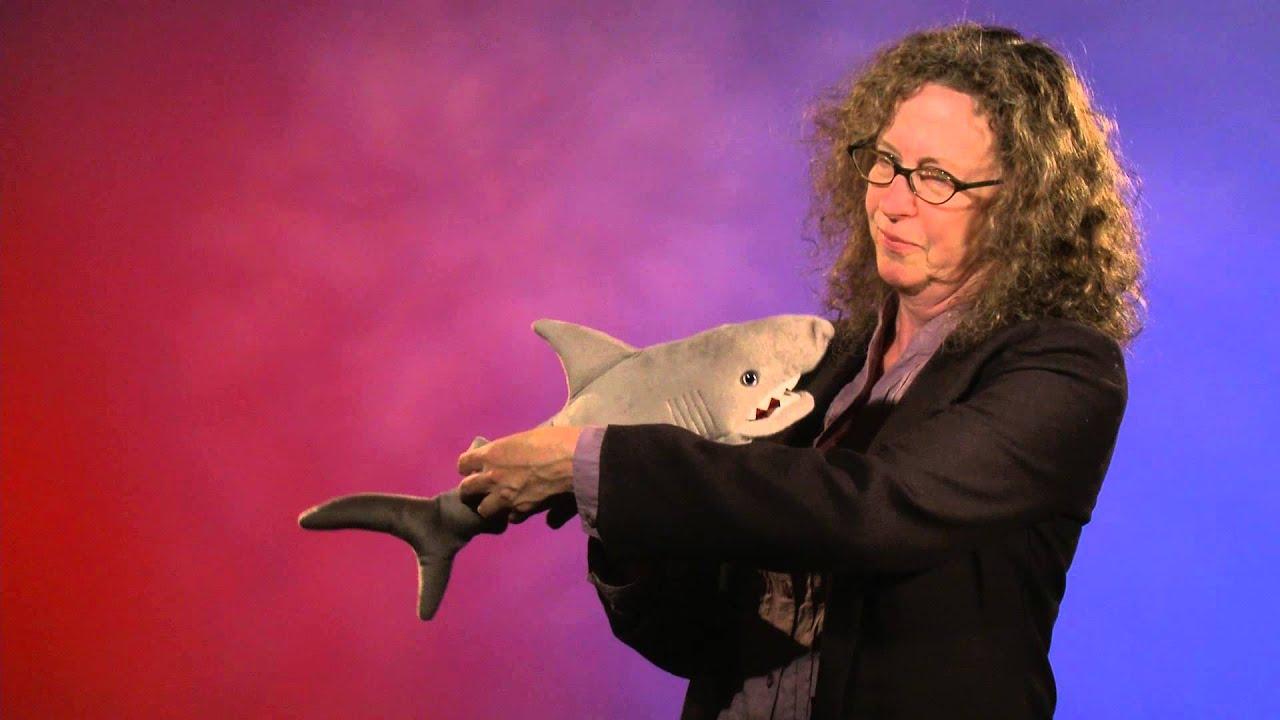 Folkmanis 174 Shark Puppet Demo Youtube