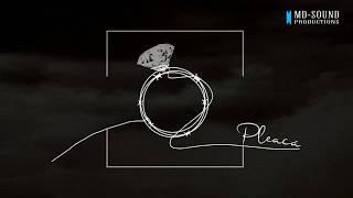 Vlad - Pleaca (Official Single)
