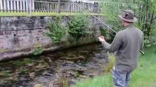 Compilation pêche truites farios sauvages au toc dans une petite rivière