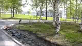 Оленегорск: достопримечательности, фото, видео, отзывы