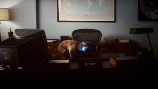 Goose Post-Credit Scene (Captain Marvel)