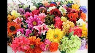 Искусственные цветы, где купить(, 2018-02-28T07:00:01.000Z)