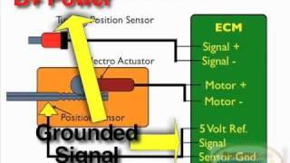 VGT Turbo Position Sensor Test