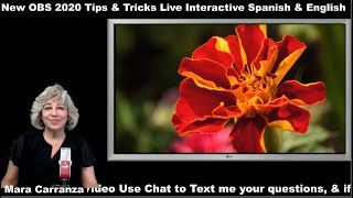 Live Interactive New OBS 2020 Tips & Tricks Live Interactive Spanish & English