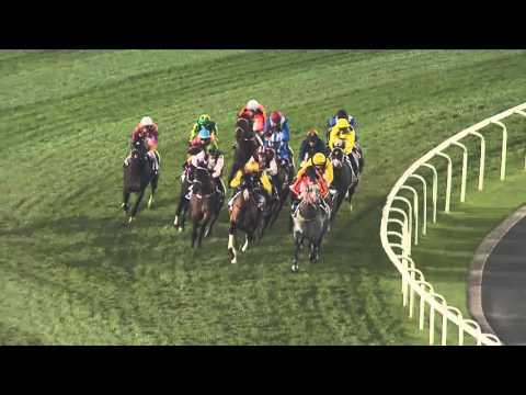Meydan Racecourse, 30 January 2016 - Race 6 - Al Naboodah Travel & Tourism Agencies Trophy Handicap