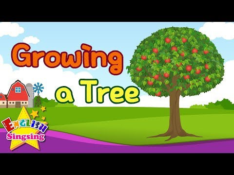 Kids vocabulary - Growing a Tree - Learn English for kids - English educational video
