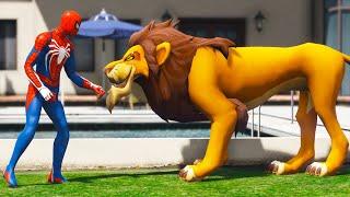 GTA 5 FUNNY RAGDOLLS LION vs SPIDERMAN JumpsFails Compilation (Euphoria Physics)