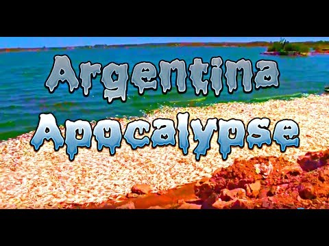 Apocalypse Argentina Fukushima Enters Atlantic Japan Sells Seaweed 6 miles from Meltdowns