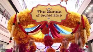 เซ็นทรัลพลาซาศาลายา ขอเชิญร่วมงาน The Sense Of Orchid 2019