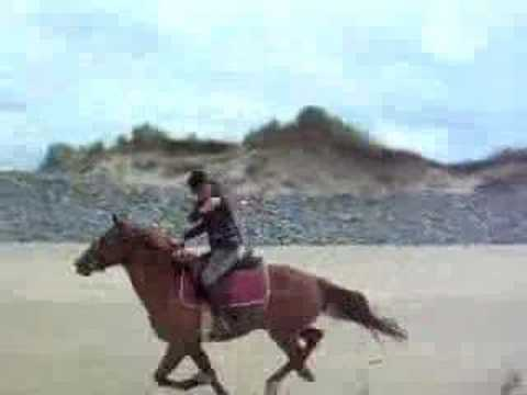 Ireland beach gallops - The girls