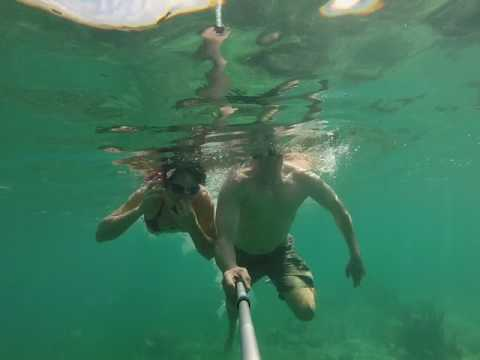 Snorkeling in the Bahamas during a Royal Carribbean Cruise Bud Light Port of Paradise Cruise!