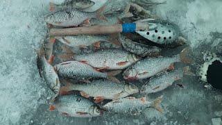Рыбалка на Белоярском водохранилище Лодочная январь 2021 года