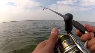 Havsöringsfiske på Gotland våren 2014