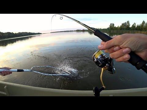 Вот она правда о рыбалке в Астрахани! Вот Как Здесь Клюет! Рыбалка на спиннинг.