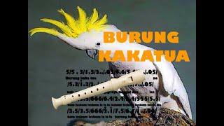 not angka burung kakatua + recorder tutorial