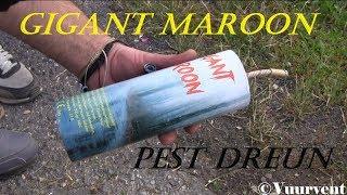 Gigant Maroon - 200Gram