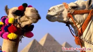 видео Лучшие отели Наама-Бей для отдыха с детьми Полный Пансион
