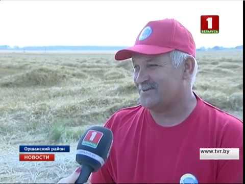видео: В Витебской области появился первый комбайнер-двухтысячник