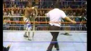 WWF History - Andre the GIANT & Jake Roberts feud