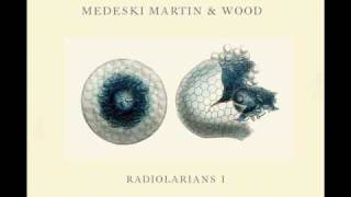 Medeski, Martin & Wood - Reliquary