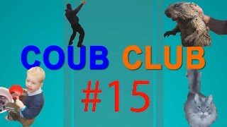 Coub Club (part-15) Best Vine and Coub compilation...