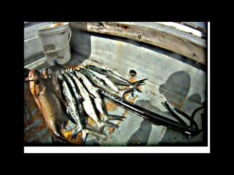 Spearfishing Jupiter FL