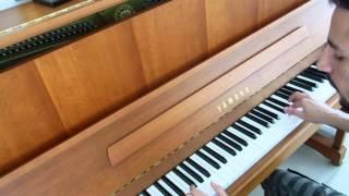 David Guetta feat Sam Martin - Lovers on the sun ( Piano arrangement by Danny )