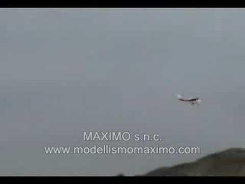 Maximo Technology