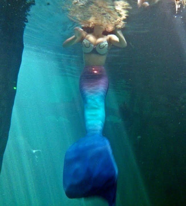 Mergulho das Sereias - Aquario de Sao Paulo - YouTube