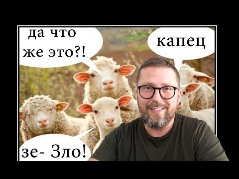 'Тупая овца' наехала на 'Слугу Народа' - Видео онлайн