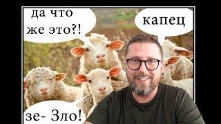 'Тупая овца' наехала на 'Слугу Народа'