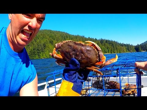 Crabbing Fun At Barnet Beach Marine Park - Last Day In Canada