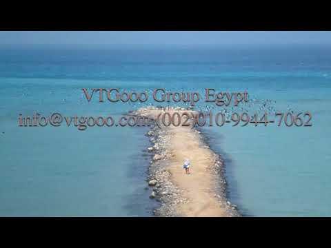 VTGooo Elnoras View