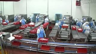 Работа в Польше на мясоперерабатывающем комбинате Pini Polonia
