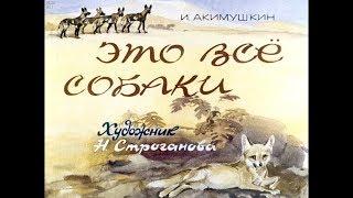 Диафильм И.Акимушкин - Это все собаки