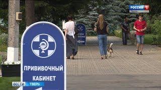 В Тверской области с начала года зарегистрировано 15 случаев бешенства