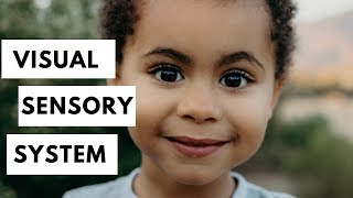 Visual Perception (Occupational Therapy) | Sensory Systems