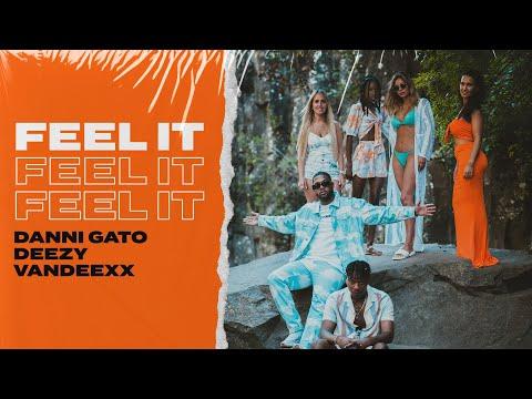 """Danni Gato x Deezy - Feel It """"ft. Vandeexx""""  (Radio Edit)"""
