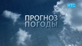 Прогноз погоды в Кыргызстане на 13.07.19 / НТС
