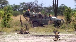 Chitabe Camp - Eyes on Africa