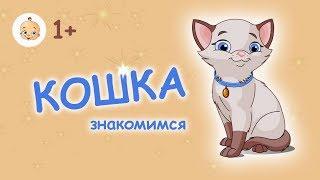 #КОШКА. #Развивающий #мультфильм #для #малышей от 1 года