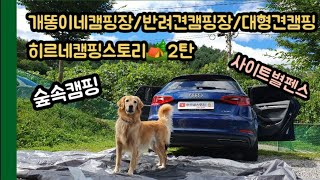 히르네:D 캠핑이야기/개똥이네캠핑장/홍천캠핑장/숲속캠핑…