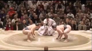 平成28年大相撲 稀勢の里 VS 鶴竜 熱闘五番