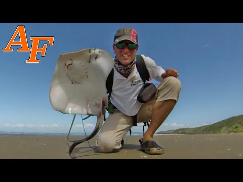 Spearing Stingray With Primitive Fire Catch And Cook EP.445