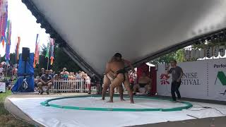 Watch: Sumo wrestling reintroduced at Japanese Festival