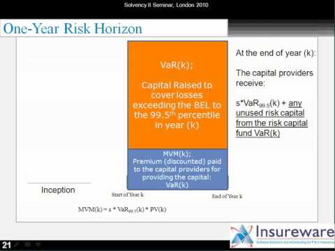 Our solution for calculating the long-tail liability Solvency II one-year risk measures