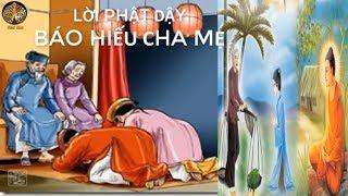 Phật Dạy Đạo Làm Người Cách Báo Hiếu Cha mẹ Tốt Nhất nhiều phước báu kể chuyện đêm khuya nhân quả n