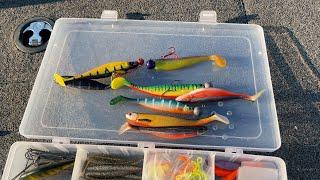 Рыбалка с ГИДОМ 2021 Секреты ловли судака на крупные приманки